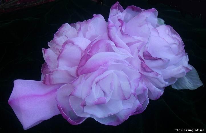 """Подхваты для штор  """"Фантазийные розы """" ."""